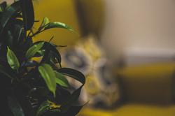 Counselling & Psychotherapy Nuneaton