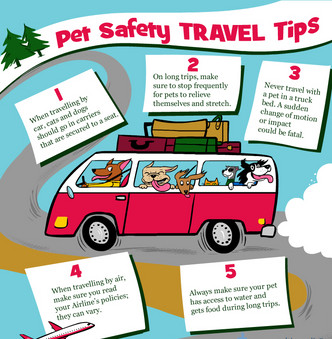 Pet Safety Travel Tips