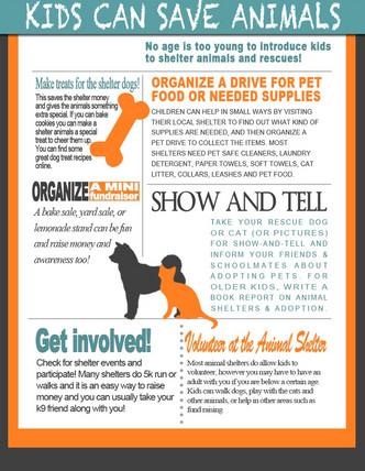 Simple Ways Kids Can Help Save Animals