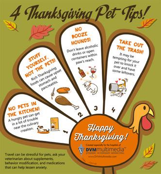 4 Thanksgiving Pet Tips!