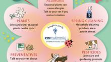 Spring Pet Safety