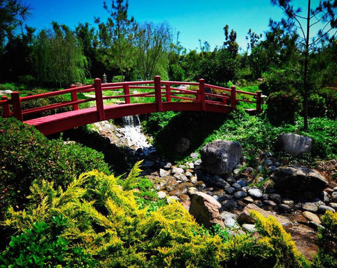 jardines_02694.jpg