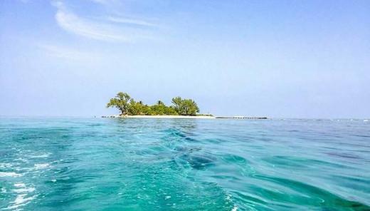 isla-1535835987-621x354.jpg
