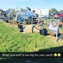 Seb sleeping at Ballarat Horse Trial 😂