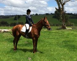 mm equestrian