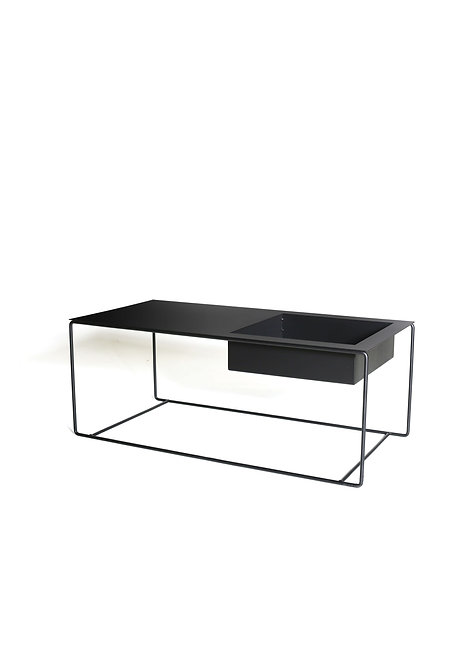 mesa de centro para suculentas