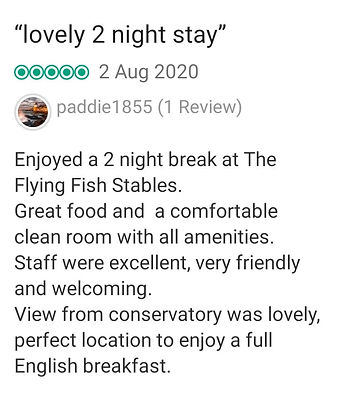great review 8.jpg