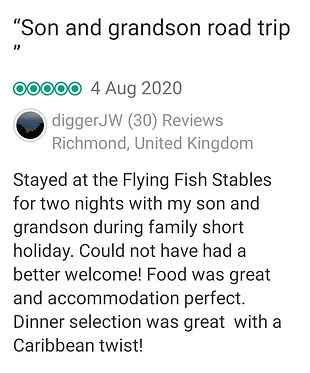 great review 7.jpg