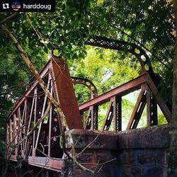Ponte de Ferro sob o olhar do _harddoug #amomaresp