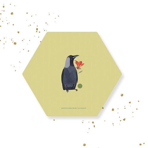 Pause | Honeycombs