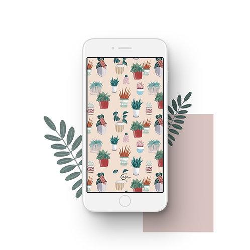 Peach Pots Wallpaper