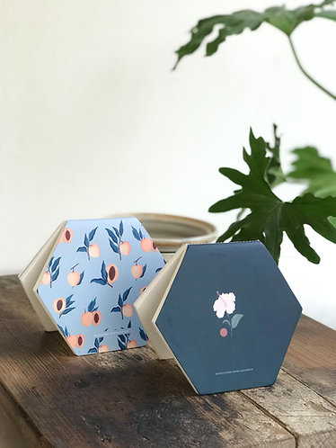 Apricot + Bloom | Honeycombs Pack of 2