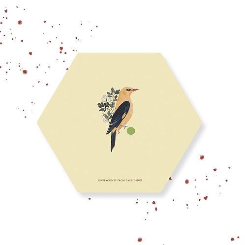 Sunshine | Honeycombs