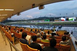Singapore-Turf-Club-Seats-5