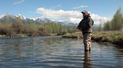 Armstrongs Spring Creek (2)