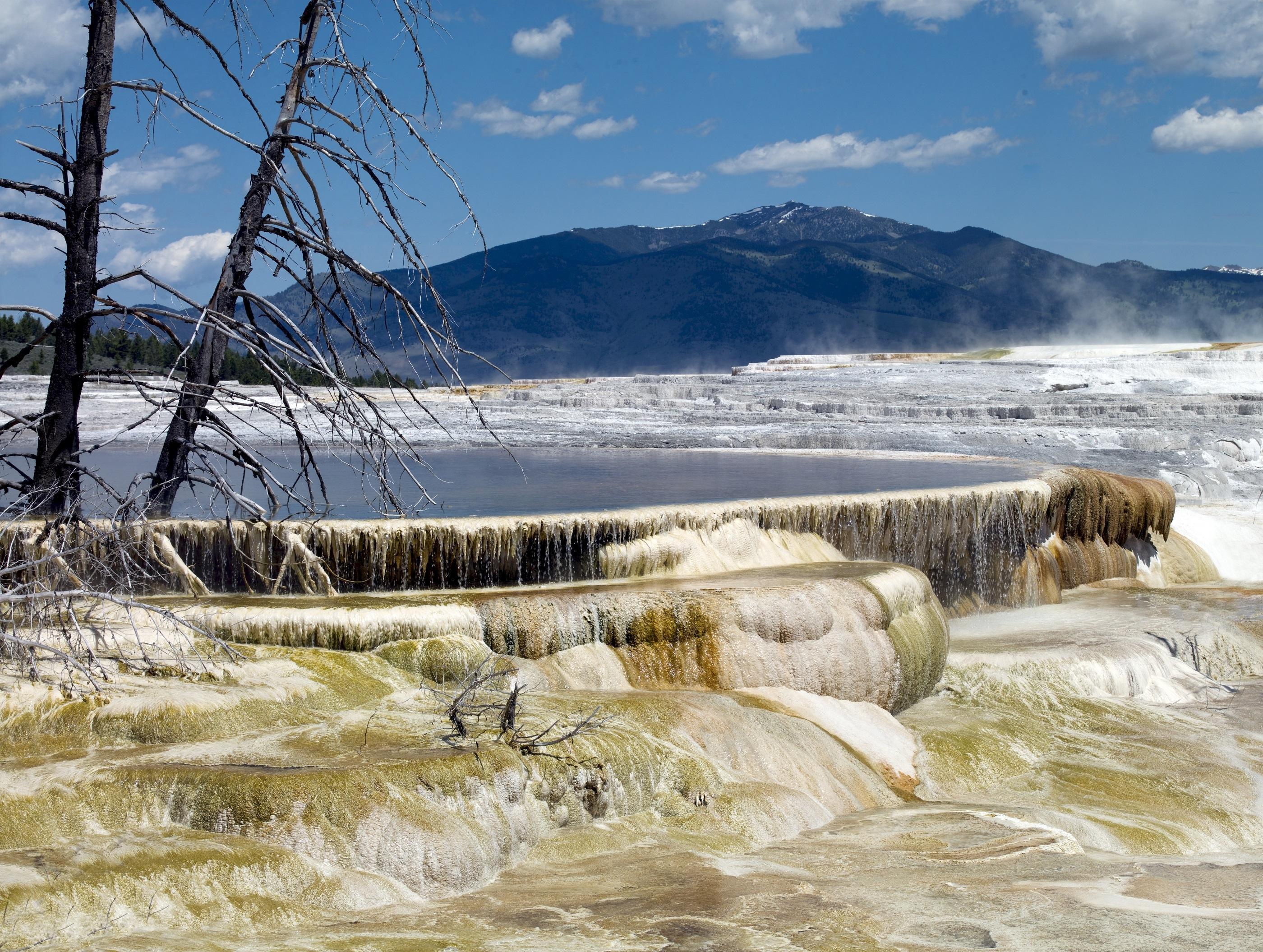 mammoth-hot-springs-1238259