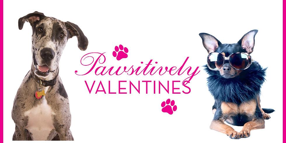 Pawsitively Valentine's