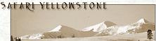 Screenshot_2021-05-21 Safari Yellowstone