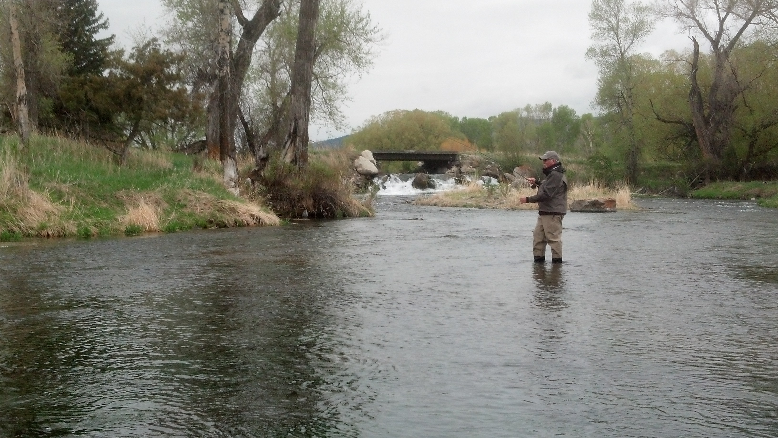 Wade fishing on Depuys Spring Creek