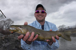 Yellowstone float brown trout