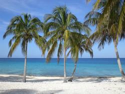 beach-1390652_1280