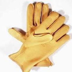 Yellowstone Gloves.jpg