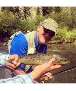 Gardiner River brown trout; YNP