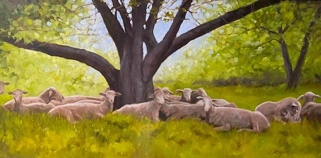 """""""Napping Sheep"""""""