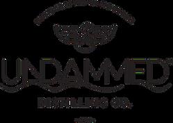 Undammed_Logo_Extended_black.png
