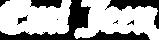 Emi Jeen Final Logo WT100x400.png