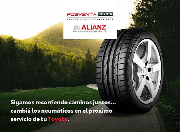 Toyota Alianz Bridgestone.jpg
