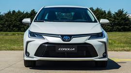 New Corolla.JPG