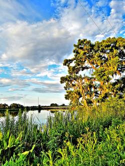 Altamaha River near Butler Island