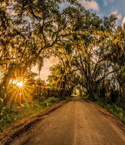 dirt road therapy