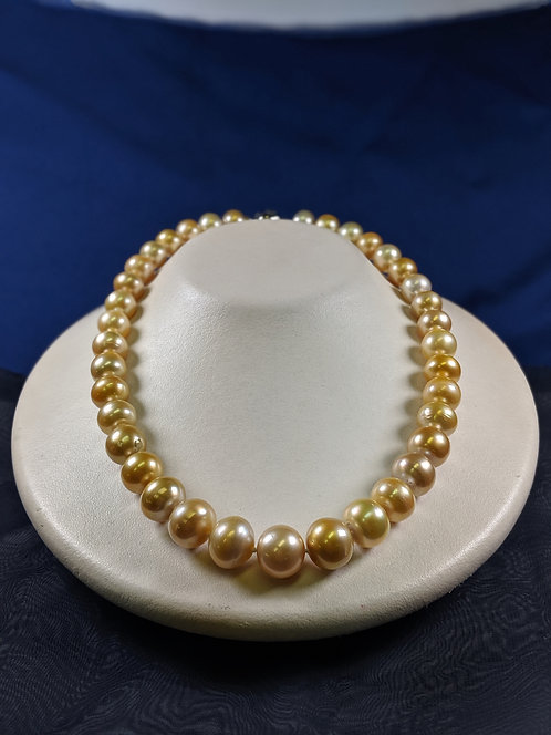 South Sea Golden Pearl Necklace, 10.0-14.0 mm