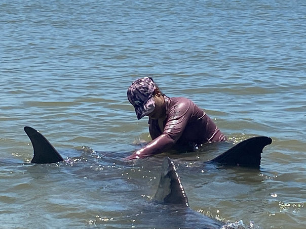 Playing with Dolphins in a beach in Trinidad