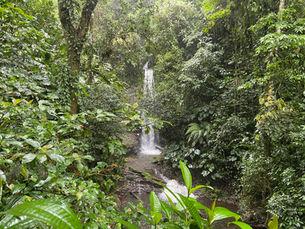 Tombasson Waterfall, Trinidad