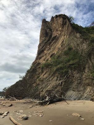 Southern coastline, Trinidad