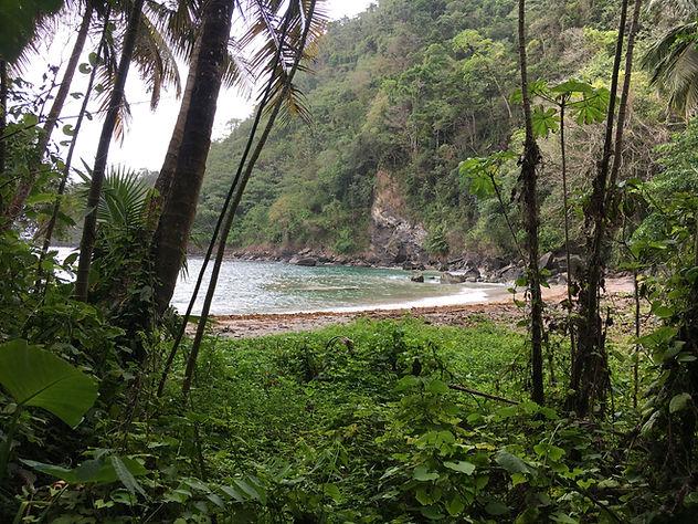 Mal D'Estmac Bay, Trinidad