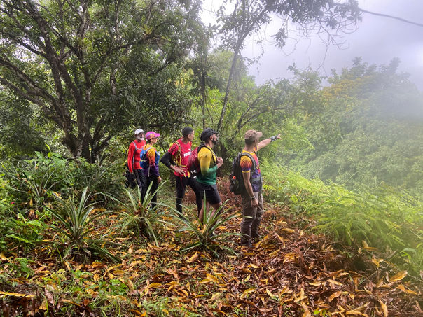 Hiking Adventure done By Nature Trekking in T&T