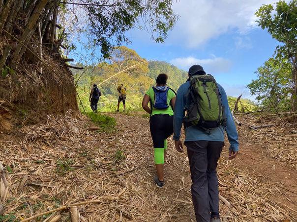 Hiking Trail in Trinidad