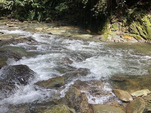 Matura River, Trinidad