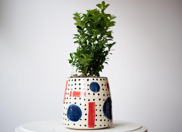 Kandins Vase