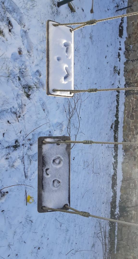 Balançoires sous la neige.jpeg