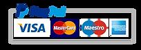 PayPal, Visa, MasterCard, Maestro, America Express