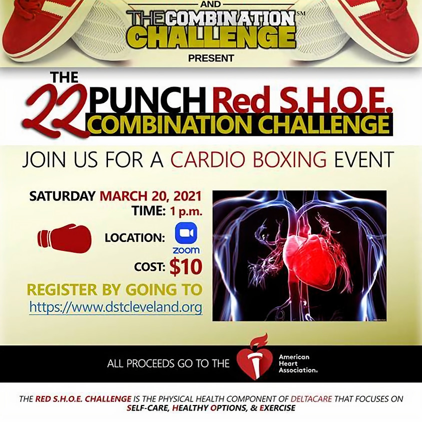 The 22 Punch Red S.H.O.E. Combination Challenge