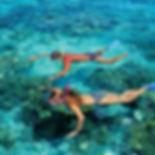 Bohol Tour snorkeling