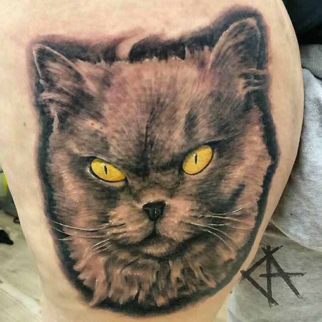 Cat Vol2 _Made a few days ago