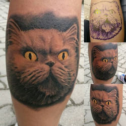 Cat _) One of my favorite pieces _#cat #tattoo #cattattoo #realistic #realistictattoo #blackandgrey