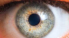 eye_glaucoma.JPG